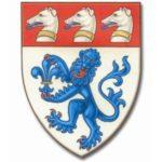 Grey High School vs Kings Macclesfield School (Cricket)